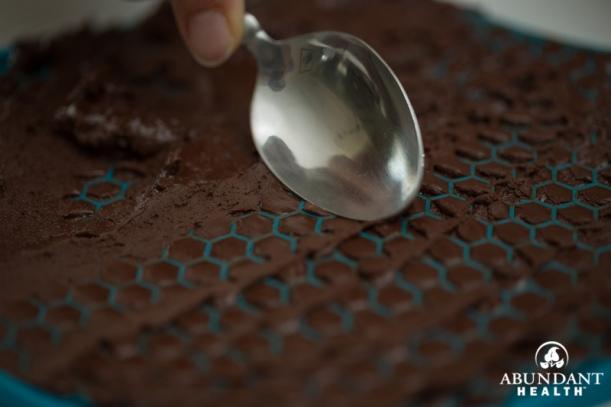 AH_ChocolateChipSpoon