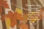 ah_pumpkinspice_diffuserblend_800